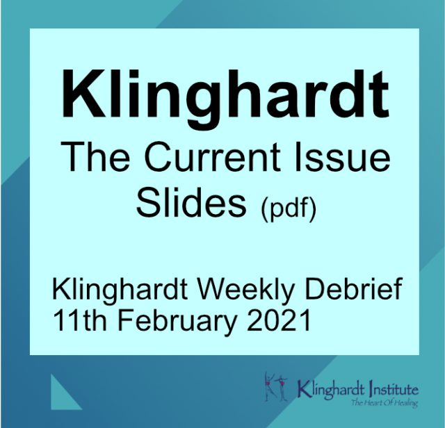 Klinghardt Current Issue Feb 2021 product image