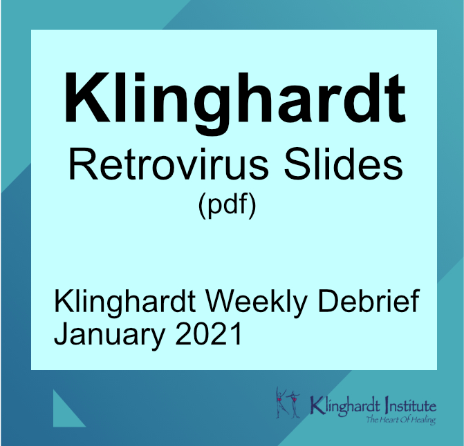 Klinghardt Retrovirus Jan 2021 slides product image